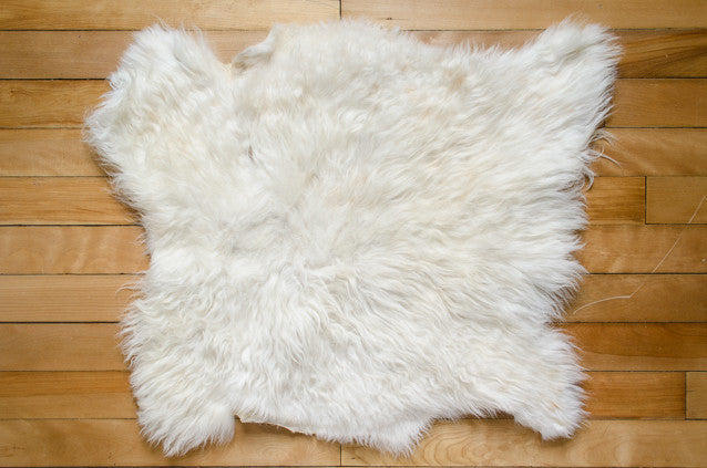 Medium White, Medium Coat Icelandic Pelt (451-8)