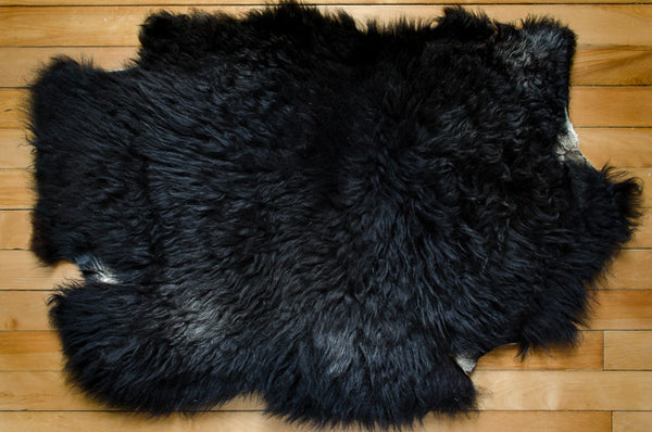 Large Black, Short Coat Icelandic Pelt (451-9)