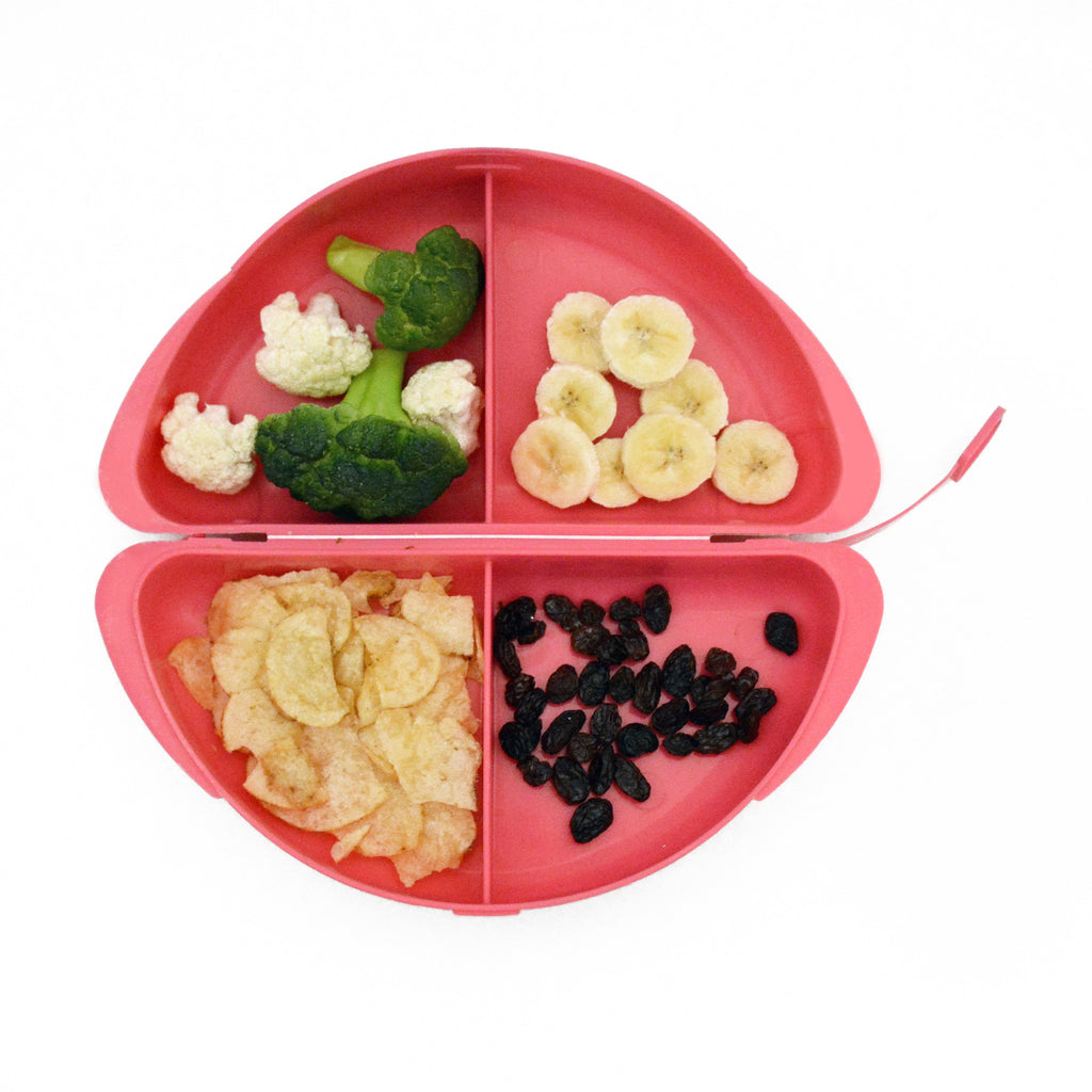 Kids Healthy Dinner & Lunch Plates