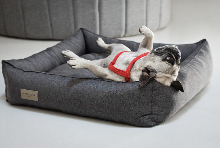 Urban Dog Bed - Graphite by Bowl and Bone - Fernie's Choice Classic Country Wear for Dogs
