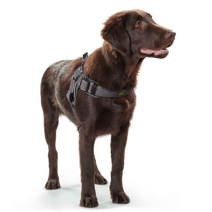 Hunter Manoa Vario Quick Light Grey Harness - Fernie's Choice Classic Country Wear for Dogs
