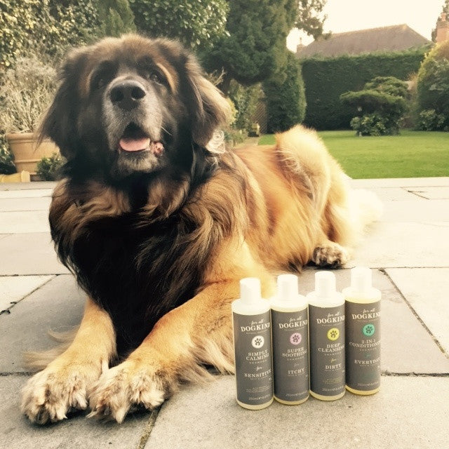 For All Dog Kind - Sensitive & Calming Dog Shampoo - Great for Puppies and Dogs with Sensitive Skin