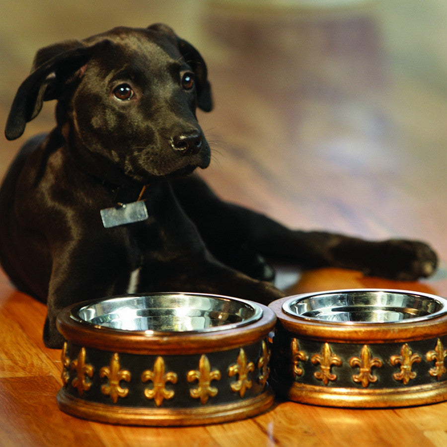 Chartres Designer Fleur de Lys Dog Bowls - Fernie's Choice Classic Country Wear for Dogs