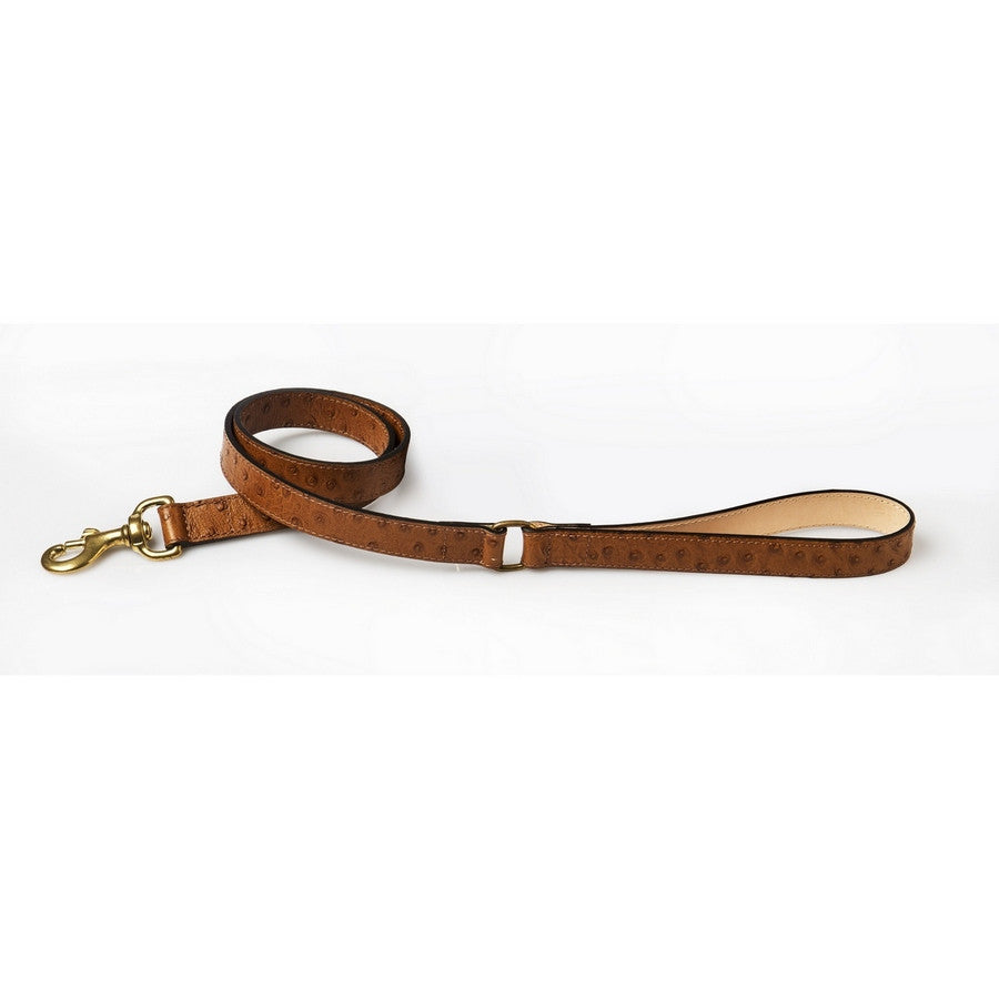 DA VINCI Luxury Ostrich Leather Dog Collar & Lead Set