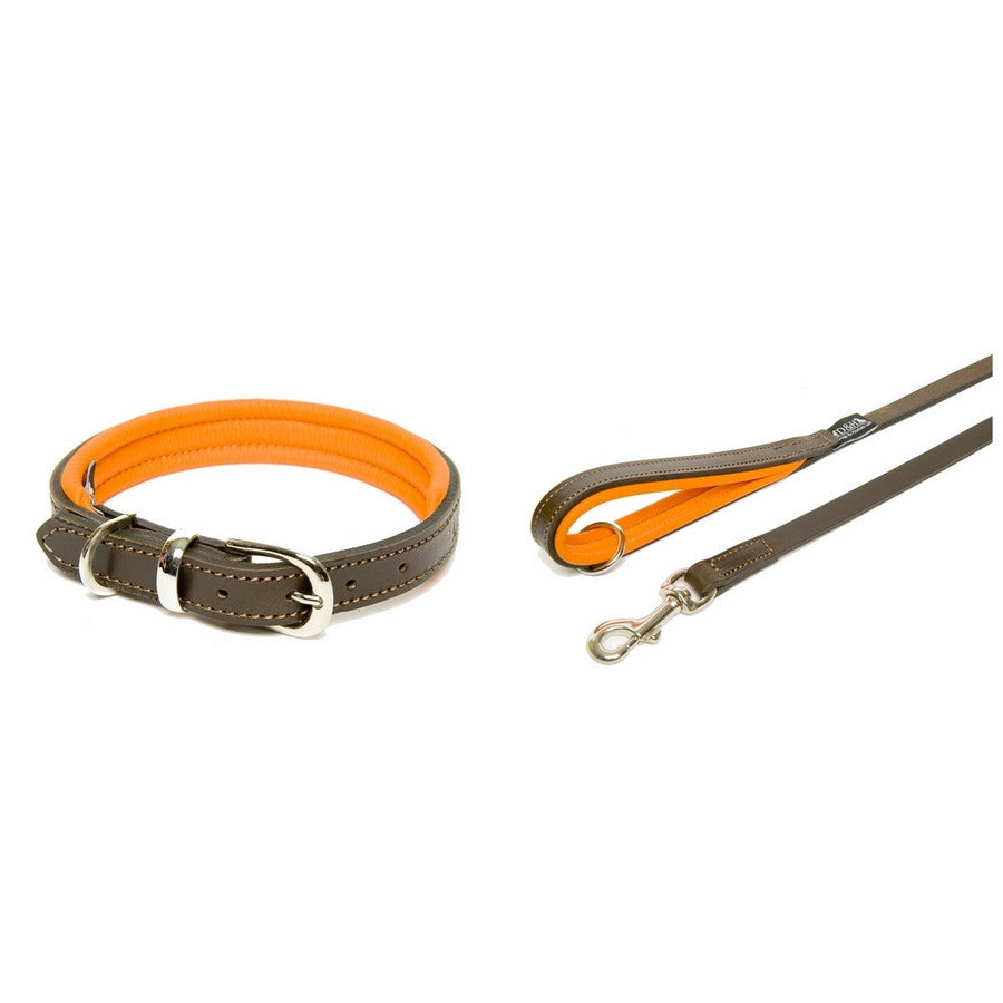 Dogs & Horses Orange & Brown Contemporary Luxury Padded Leather Dog Collar & Lead Set - Fernie's Choice