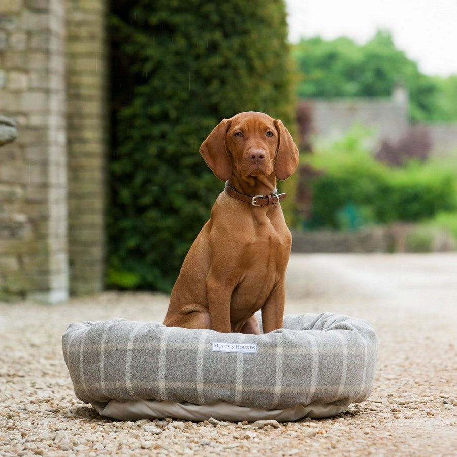Slate Tweed Donut Bed - Fernie's Choice Classic Country Wear for Dogs