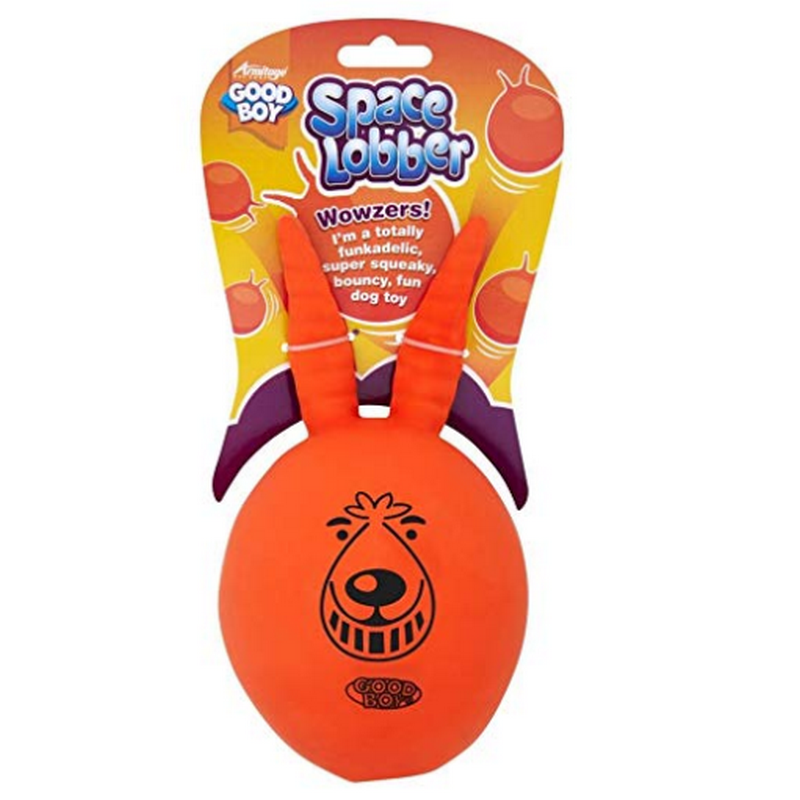 Space Lobber Squeaking Dog Toy - Fernie's Choice Classic Country Wear for Dogs