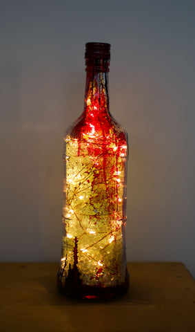 100 LED Plug In Fairy Light Hand Dyed Bottle Lamp