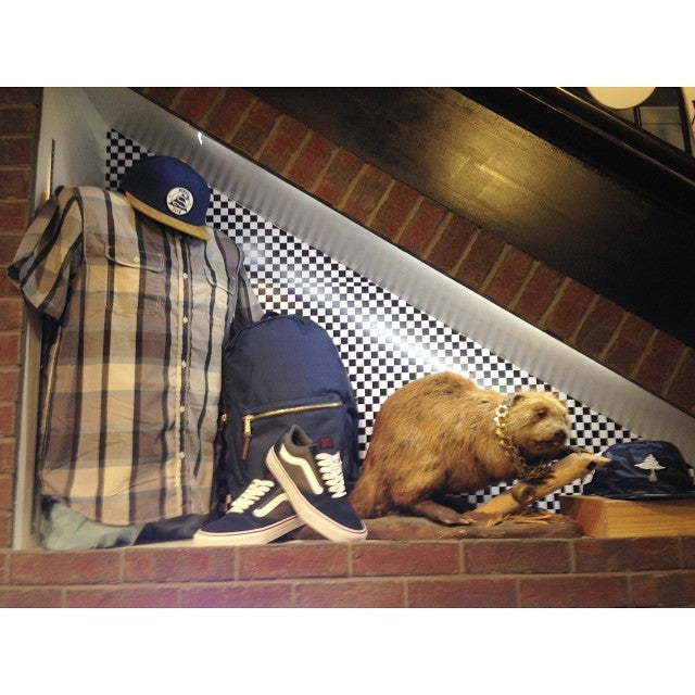 all this gear ready for the last July weekend. @vans button ups and #tnt shoes @herschelsupply bags @lrgclothing and @kr3wdenim snapbacks. beaver not for sale. #summer