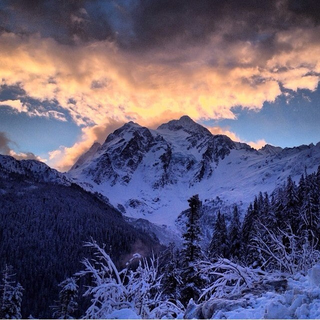 winter is back. mtbaker got a foot of fresh last night and blue skies today. Epic regram from @mikelmotlik.