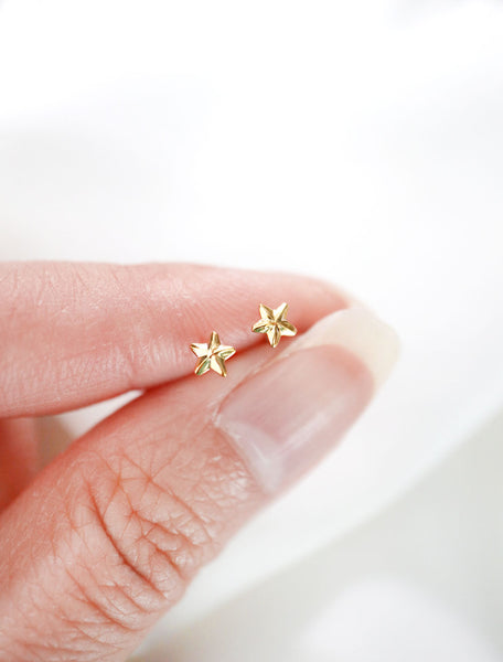 gold filled micro star stud earrings in hand
