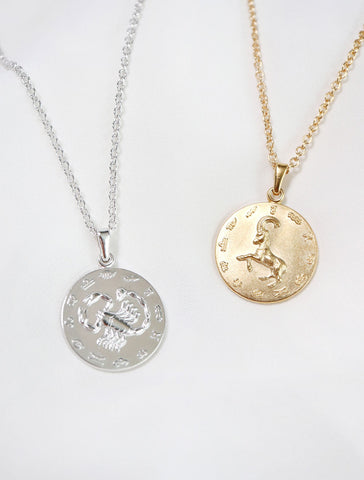 silver & gold large horoscope necklace
