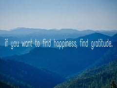 find happiness find gratitude