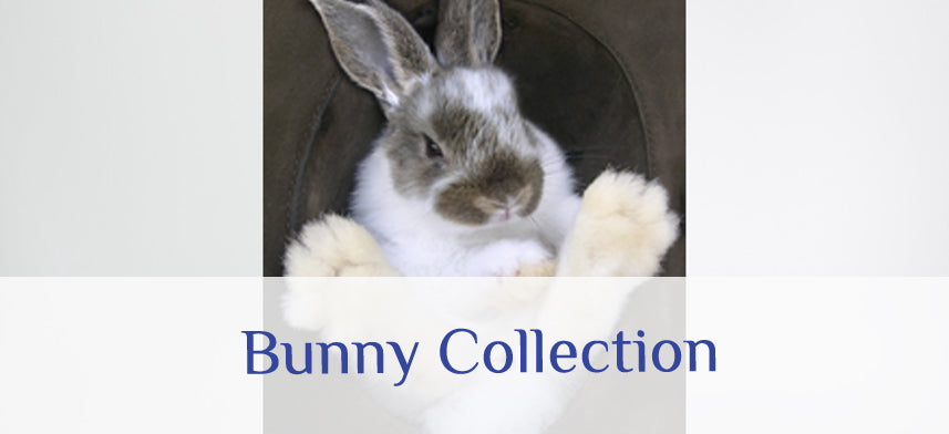 About Wall Decor's Bunny Collection