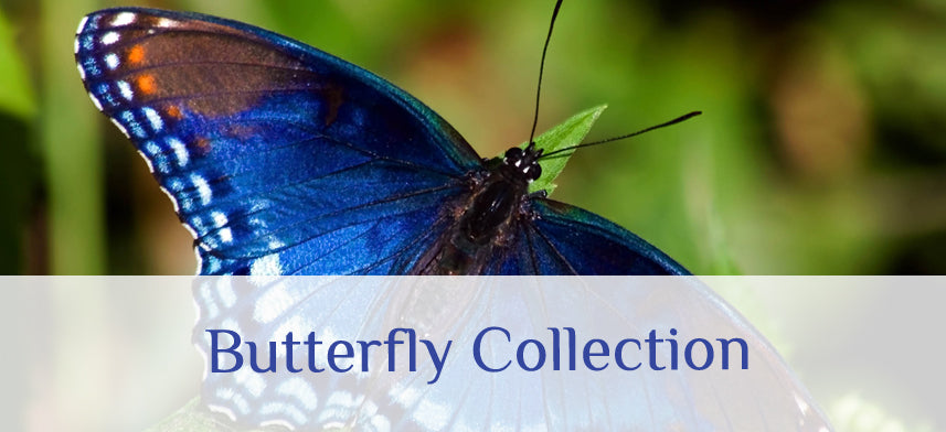 About Wall Decor's Butterfly Collection