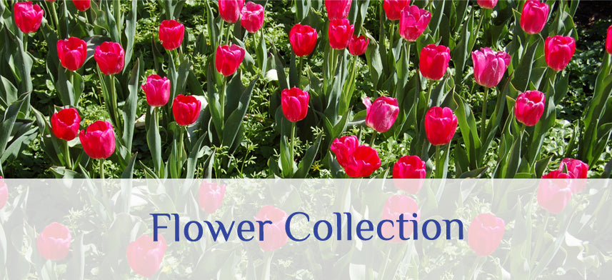 About Wall Decor's Flower Collection