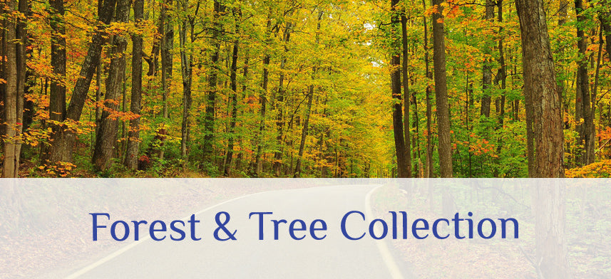 About Wall Decor's Forest & Tree Collection