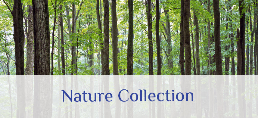 About Wall Decor's Nature Collection