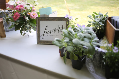 using small potted plants as wedding favors