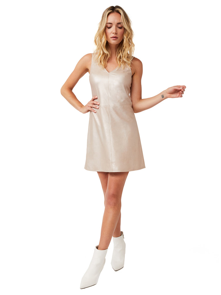 02e1e296038 Cannes Suede Shift Dress – AS by DF