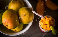 Medium Alphonso Mangoes from Devgad