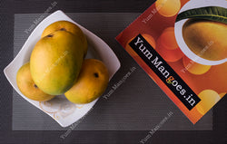 Pre Order Large Alphonso Mangoes from Ratnagiri