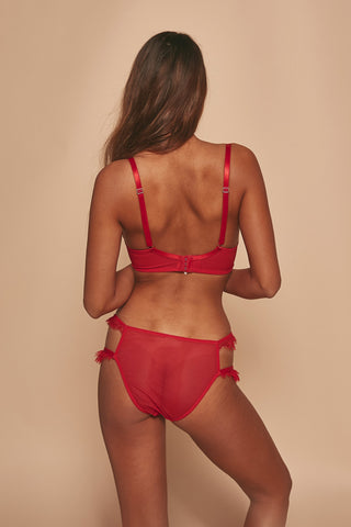 Megan Red Tulle And Lace Brief