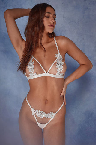 Lia Fishnet and lace body