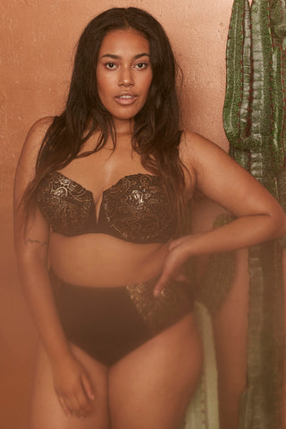 Leah Gold lace high waist bikini brief curve