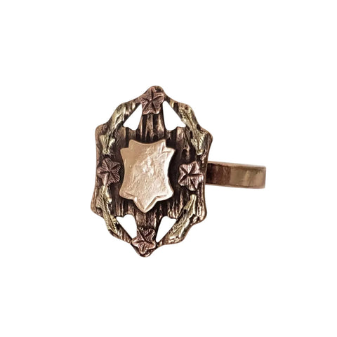 Circa 1860 Gold-Filled Signet Shield Ring with Applied Rose and Green Gold Accents