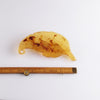 Vintage Carved Lucite Leaf Brooch
