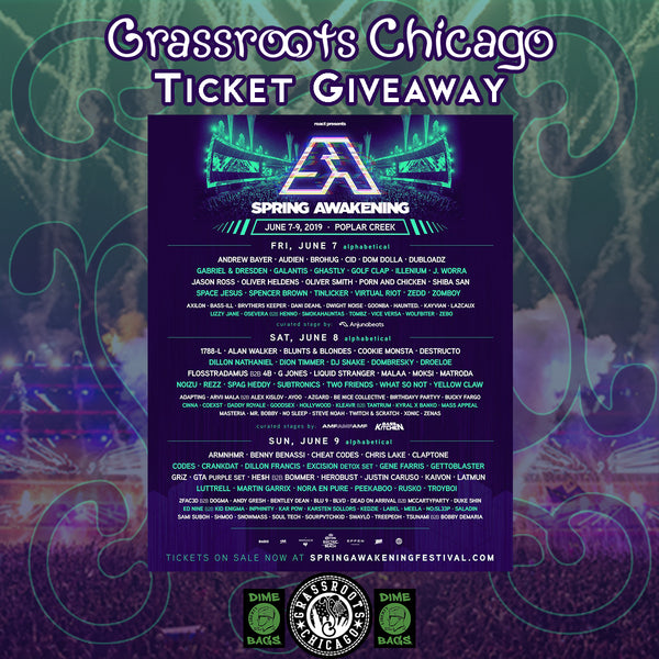8354c9123d3a9 Who s Who of Chicago s Spring Awakening Music Festival