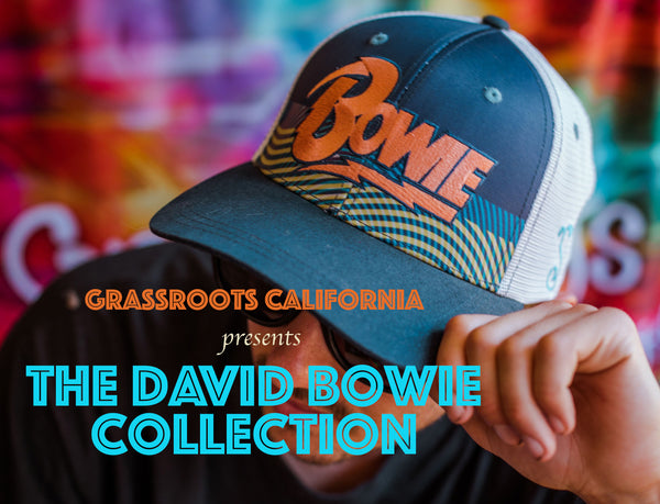 Grassroots Celebrates David Bowie