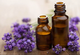Lavender Oil Insect Repellant