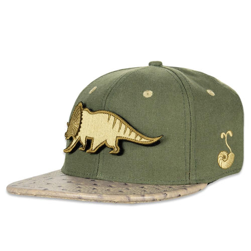 Kids Removable Bear Tribearitops Snapback
