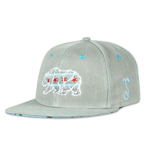 Kids Chicago Mosaic Bear Gray Snapback