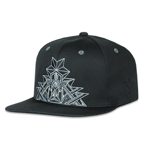 Dri-Bear Back to the Matrix Black Pro Fit Snapback Hat