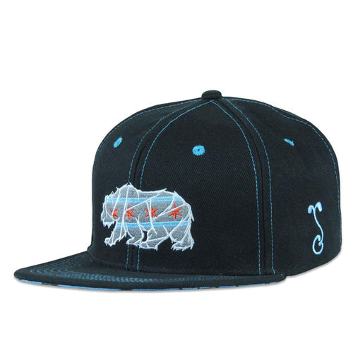 Kids Chicago Mosaic Bear Black Snapback