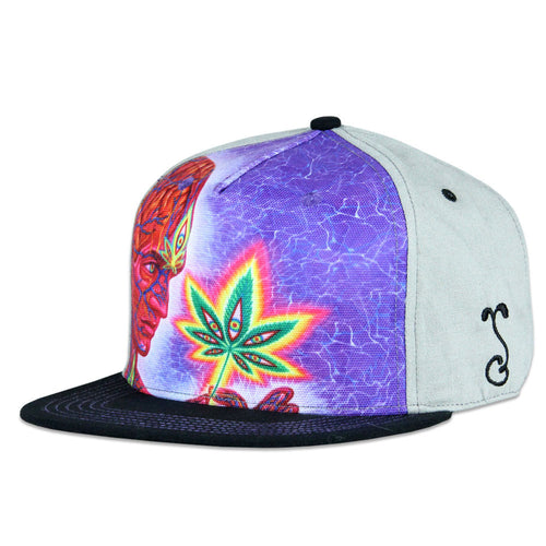 Alex Grey Cannabis Sutra Gray Fitted
