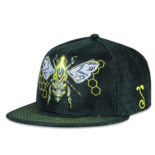 Grassroots Honey Fund Black Fitted