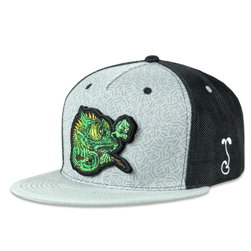 Aaron Brooks Removable Chameleon Black Snapback