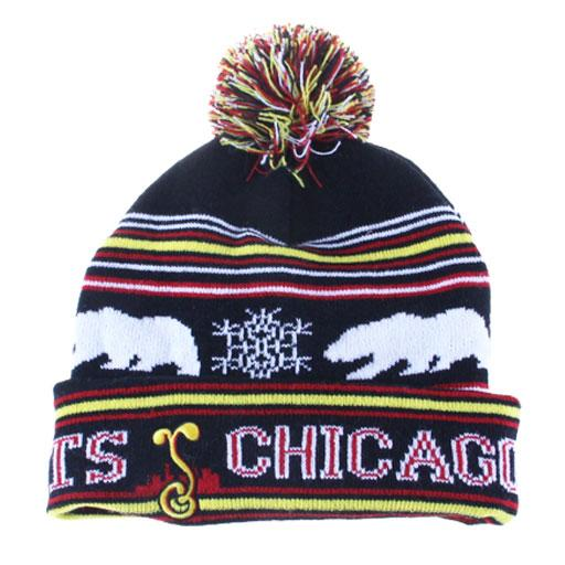 College Chicago Blunt Feathers 2016 Beanie