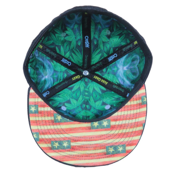 Alex Grey's George Washington Hemp Farmer Shallow Fitted - Grassroots California - 2