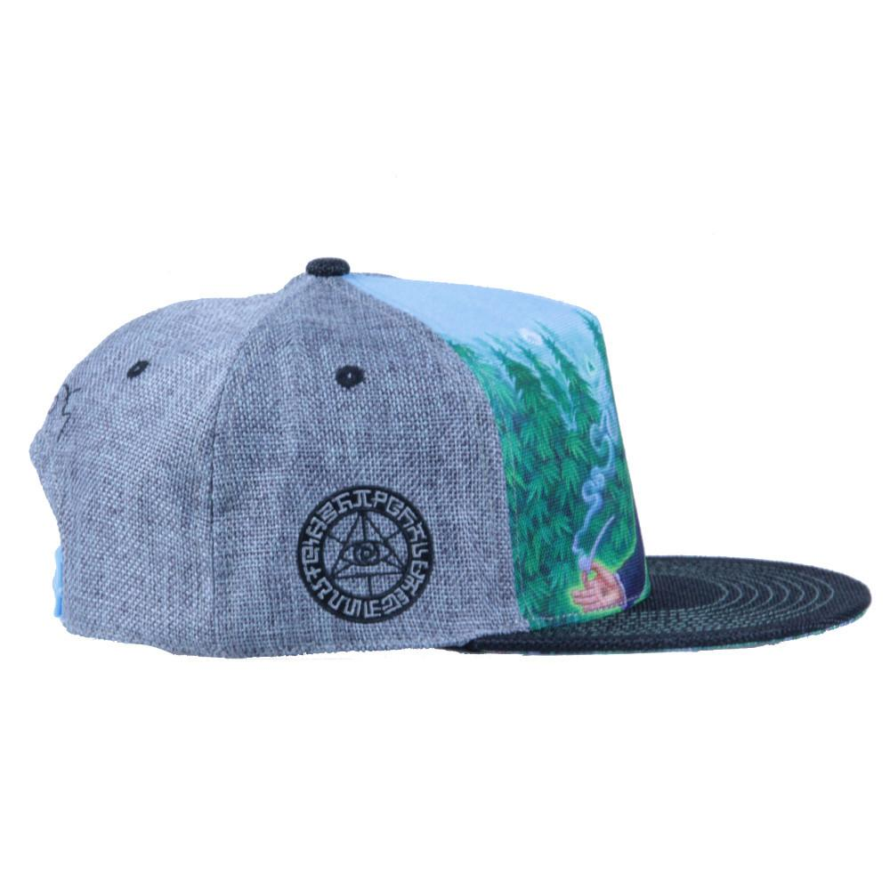 Alex Grey's George Washington Hemp Farmer Shallow Snapback - Grassroots California - 4