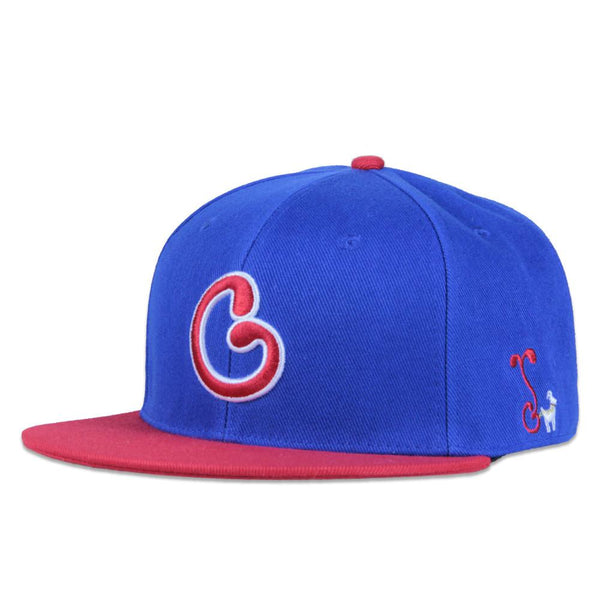 Chicago North Side Snapback - Grassroots California - 1