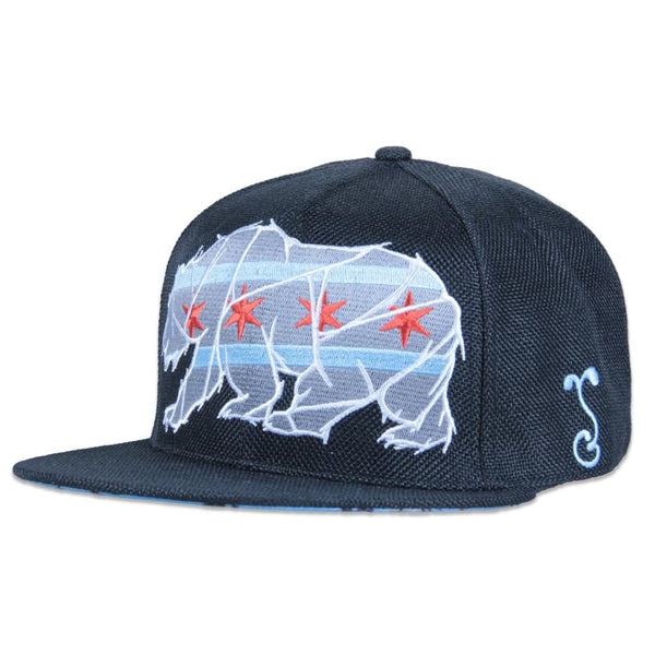 Chicago Mosaic Bear Gray Fitted - Grassroots California - 1