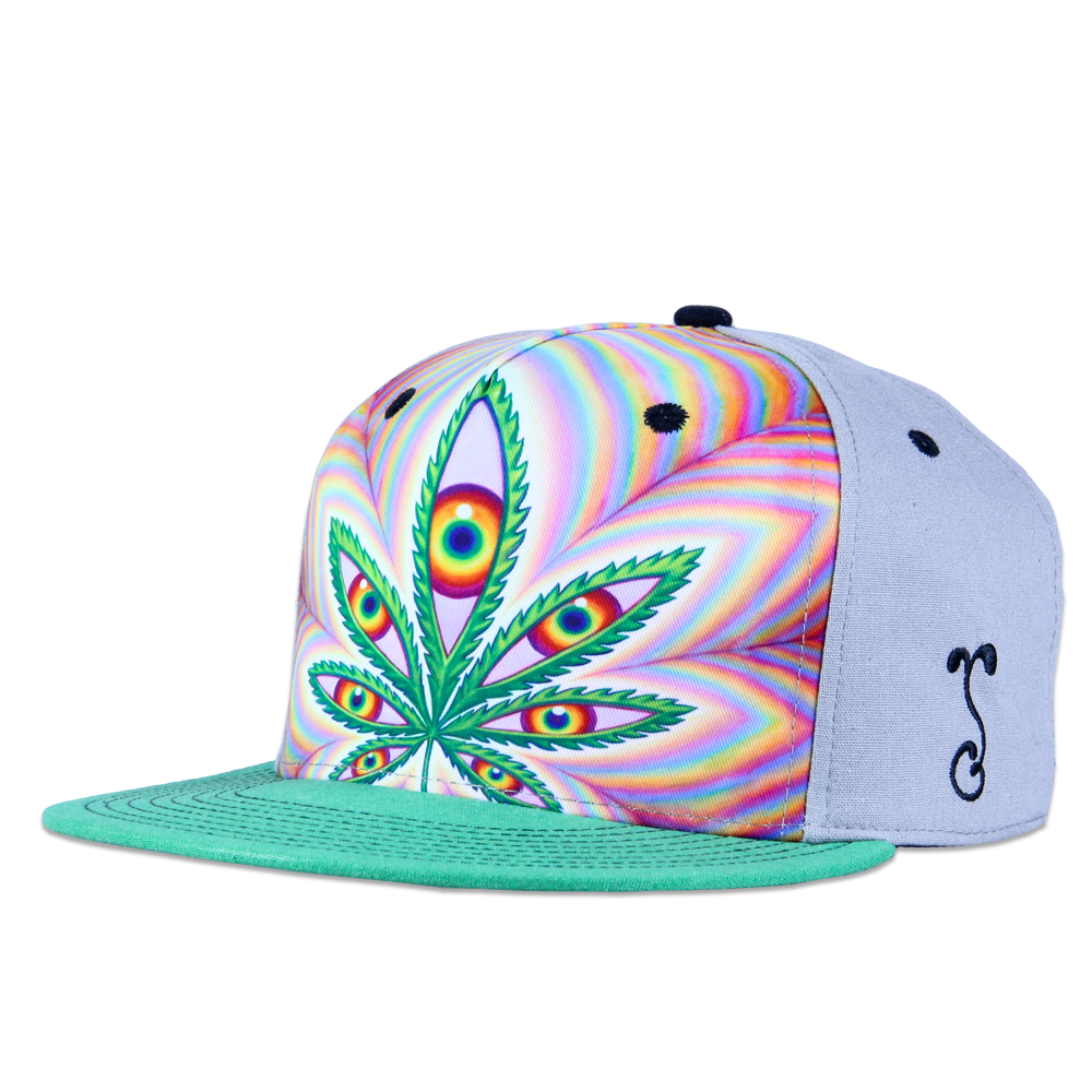 Alex Grey Higher Vision Shallow Snapback