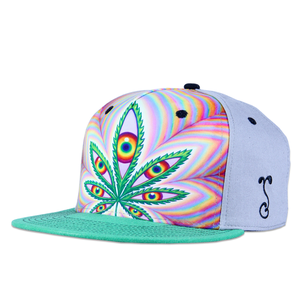 Alex Grey Higher Vision Shallow Snapback - Grassroots California - 1