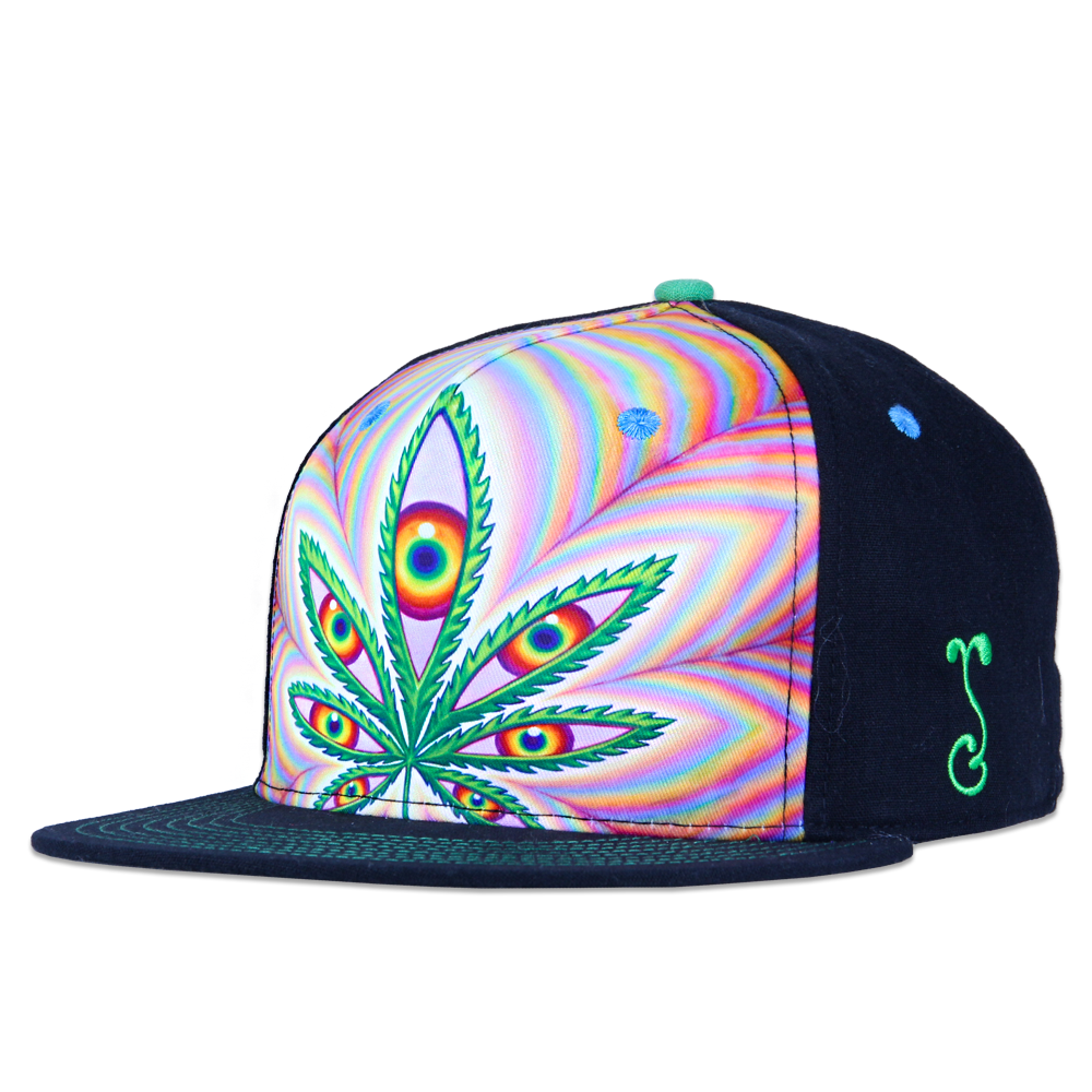 Alex Grey Higher Vision Shallow Fitted