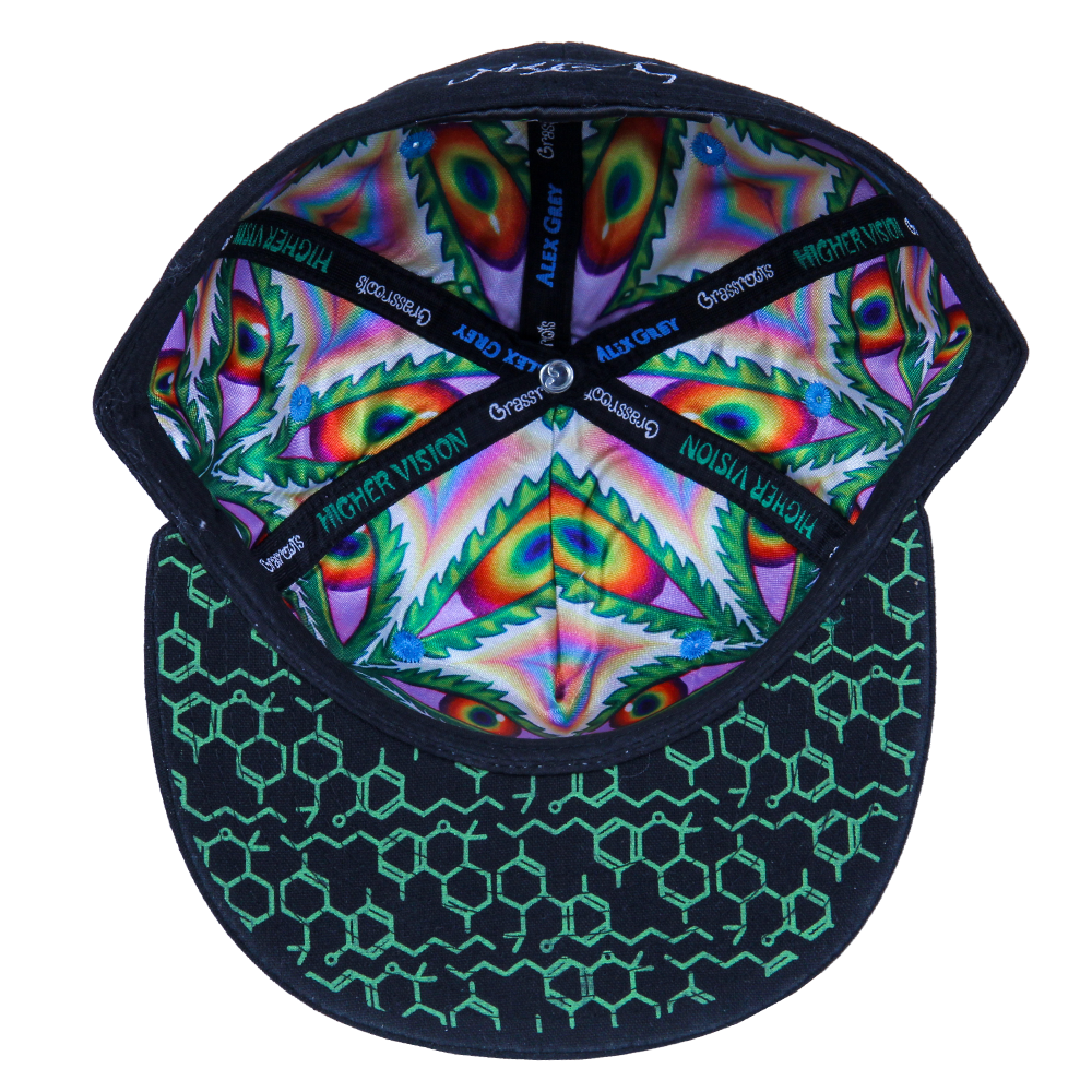 Alex Grey Higher Vision Shallow Fitted - Grassroots California - 2